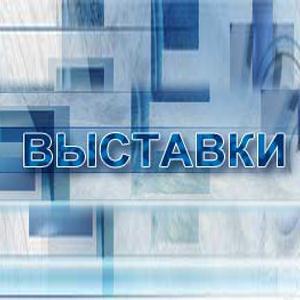 Выставки Шереметьевского